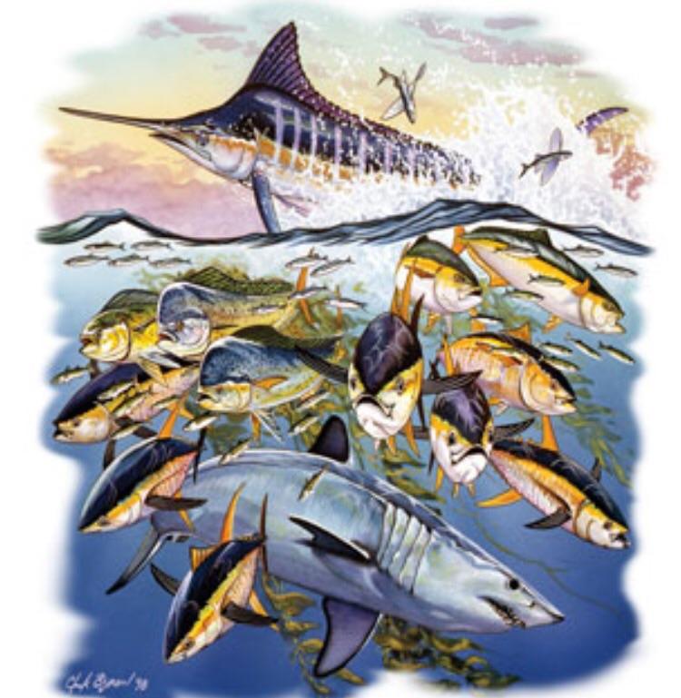 Saltwater fishing shirts fishing shirts for Saltwater fishing clothes